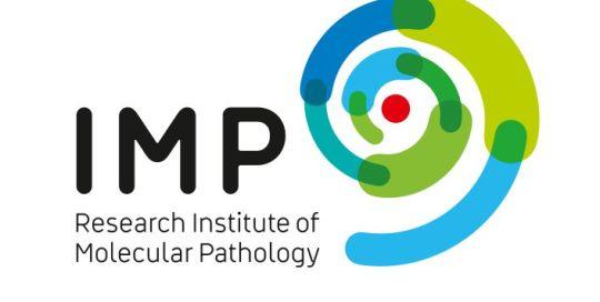 IMP Logo V1 CMYK